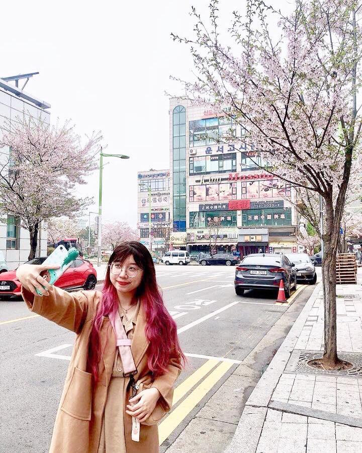Xứ sở Kim Chi đầy thơ mộng mùa nào cũng đẹp.