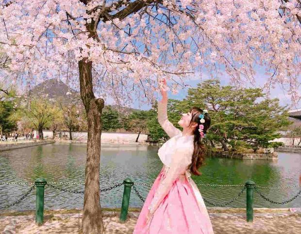 Bạn cần lịch trình tham quan kèm bản dịch tiếng Anh hoặc tiếng Hàn khi xin visa Hàn Quốc.